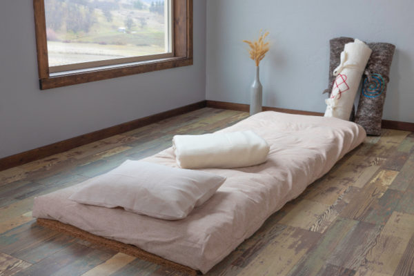 Stargazer Travel Pad with Organic Cover and Travel Pillow and blanket.
