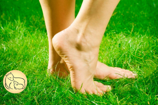 natural prevention for blisters